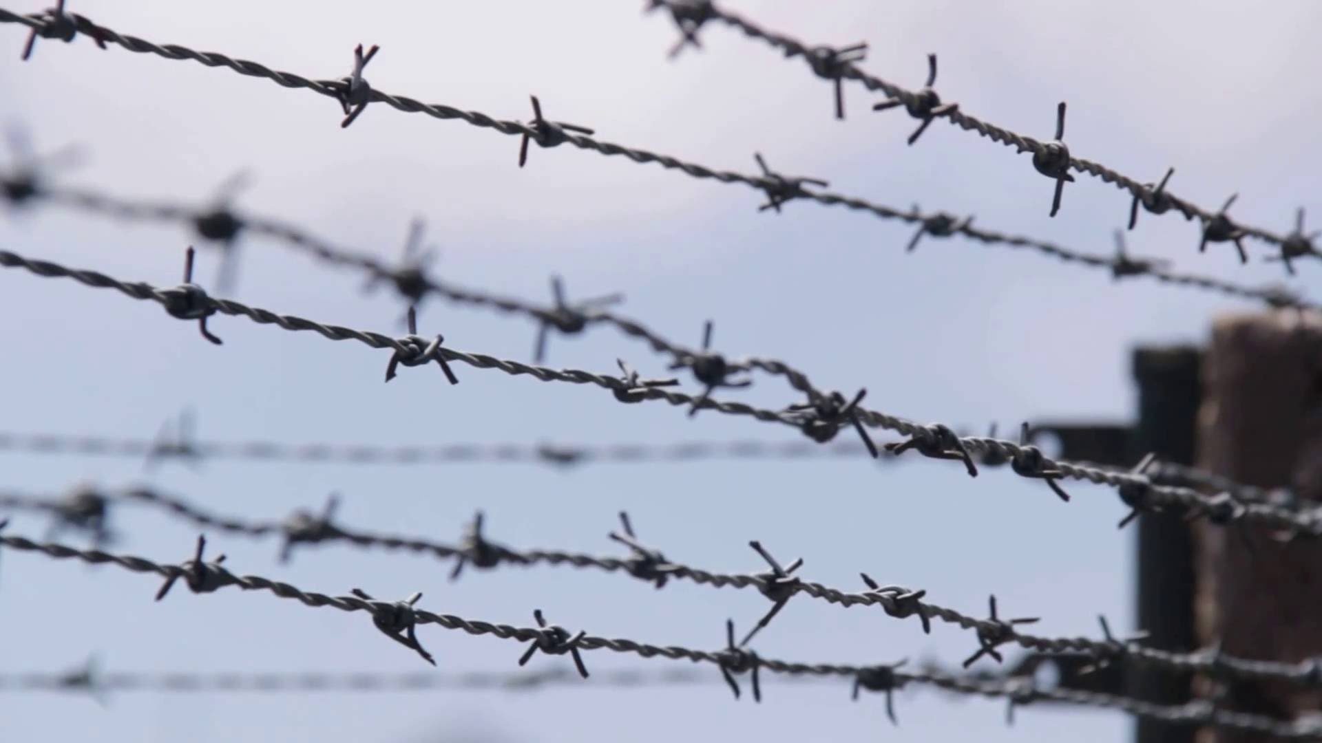Barbed Wire Fence,barbed Wire Fencing Manufacturer Dongfu