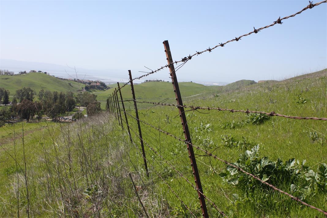 Grassland Boundary